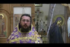 Об отсечении своей воли. Священник Игорь Сильченков