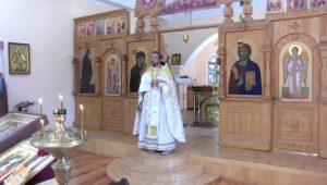Христианская православная проповедь: О стяжании благодати и приложении всего остального. Проповеди священника Игоря Сильченкова