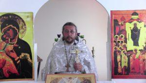 Христианская православная проповедь: Какие признаки того, что человек живет не по воле Божией. Проповеди священника Игоря Сильченкова