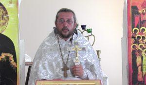 Христианская православная проповедь: Для чего нужна семейная жизнь. Проповеди священника Игоря Сильченкова