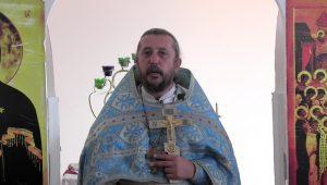 Христианская православная проповедь: О том, почему мы все братья и сестры во Христе. Проповеди священника Игоря Сильченкова