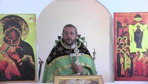 Христианская православная проповедь: От чего в жизни бывают черная и белая полоса. Проповеди священника Игоря Сильченкова